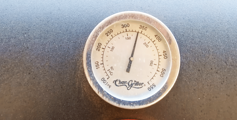 Check-The-Temperature-Of-The-Meat