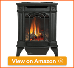 Napoleon-GDS20N-Direct-Vent-Fireplaces